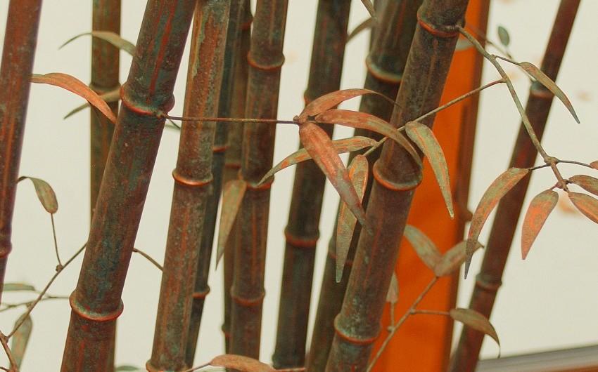 Bamboo Iron Close Up